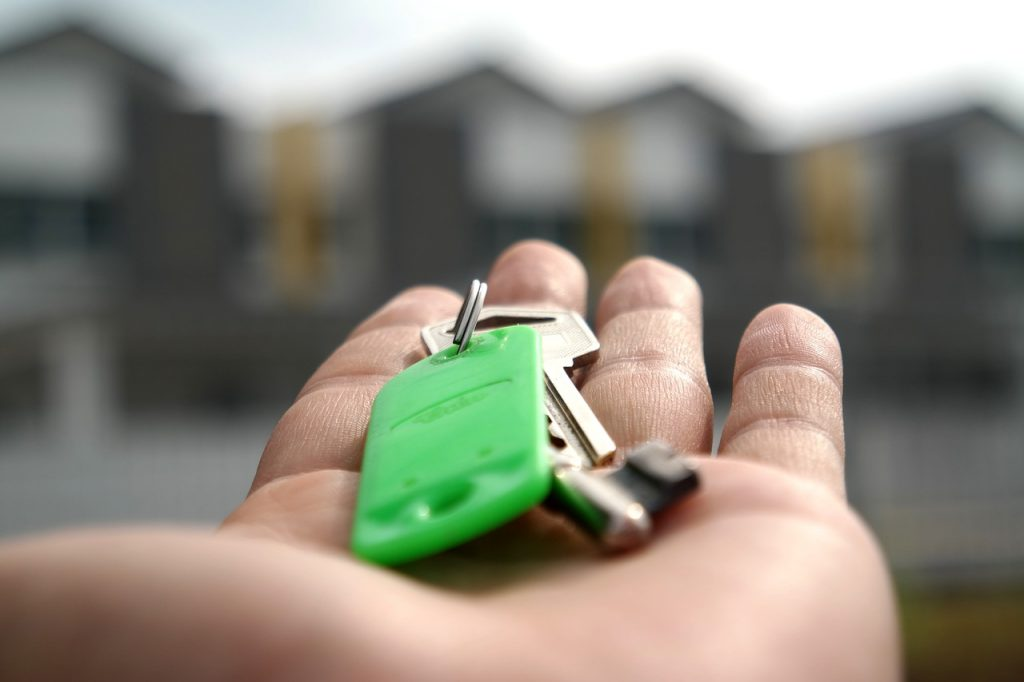 Rental Website Showdown: Who Will Get You Home